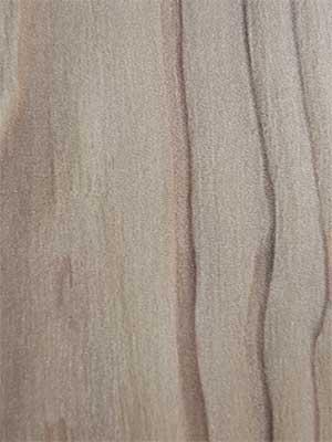 Канон песчаный