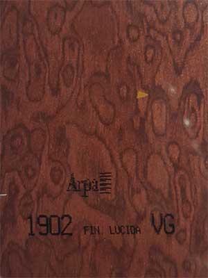 1902-fin-lucida