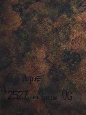 2527-fin-lucida