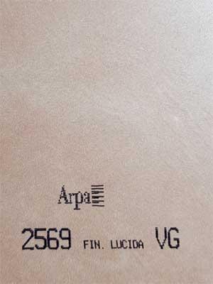 2569-fin-lucida
